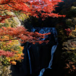 袋田の滝の紅葉(茨城県大子町)/Autumn leaves of Fukuroda falls (Daigo, Ibaraki)