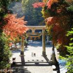 宝登山神社の紅葉(埼玉県秩父郡長瀞町)
