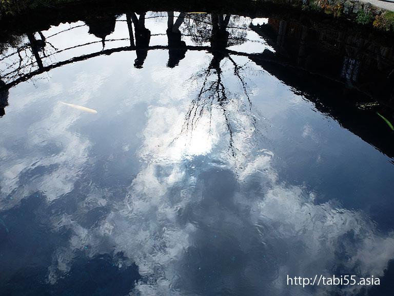 空を泳ぐ鯉(忍野八海)
