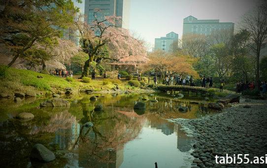 小石川後楽園の梅・枝垂れ桜(春)と、紅葉(秋)で季節を感じる(東京都文京区)