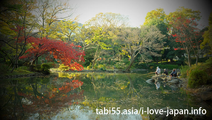 ほんとに都心?有栖川宮記念公園の紅葉(東京都港区)