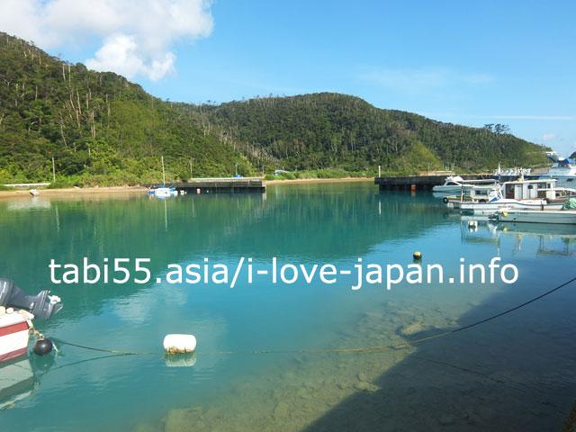 加計呂麻島の生間港到着!緑と立ち枯れの樹木
