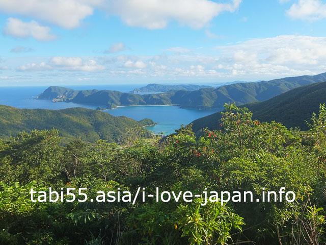 油井岳展望台から、大島海峡の絶景を眺める