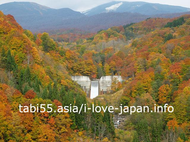 寒河江ダム付近の紅葉