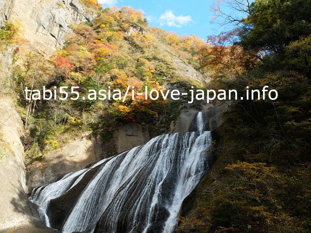 吊り橋から見上げる!斜め45度の袋田の滝with紅葉