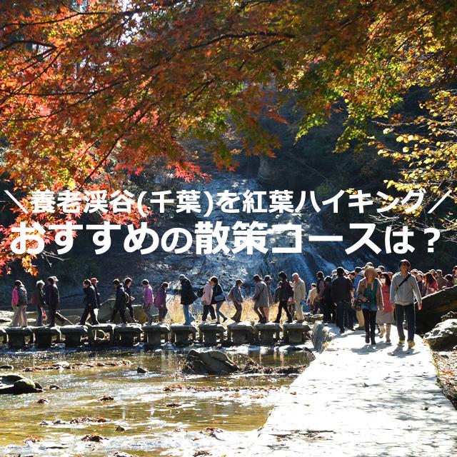 養老渓谷【1泊2日】紅葉ハイキング!おすすめ散策コースは?
