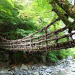 奥祖谷二重かずら橋・野猿(徳島県三好市)