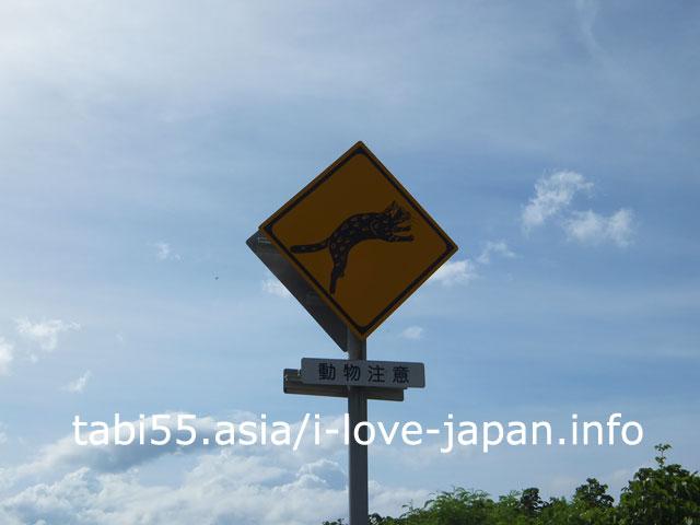 動物注意!イリオモテヤマネコの交通標識