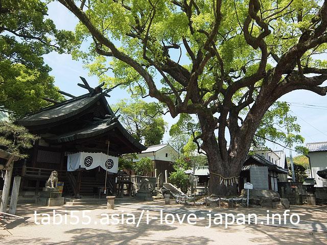 尾道旧市内で最古の神社と言われる「艮神社(うしとら)」