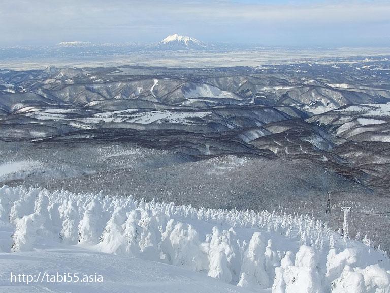 樹氷:スノーモンスター/snow monsters(青森県青森市)