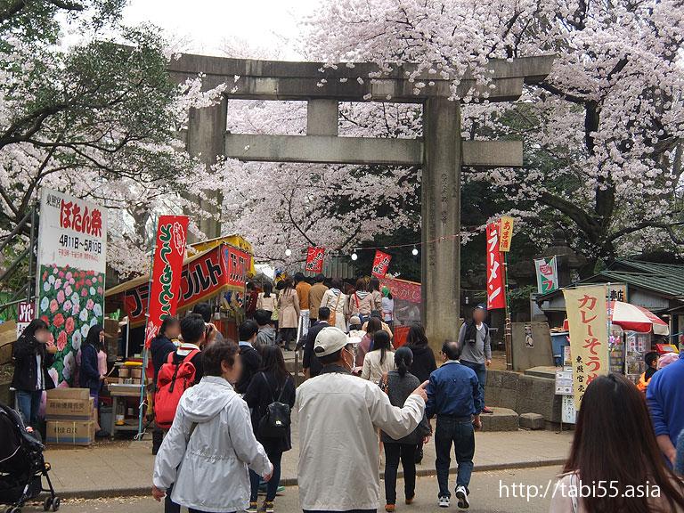 上野東照宮の参道|上野恩賜公園(東京都台東区)/Ueno Park (Taito-ku, Tokyo)