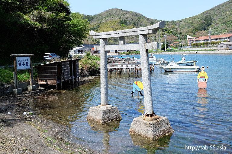 イカ寄せの浜(島根県西ノ島)/Beach squid gather(Shimane)