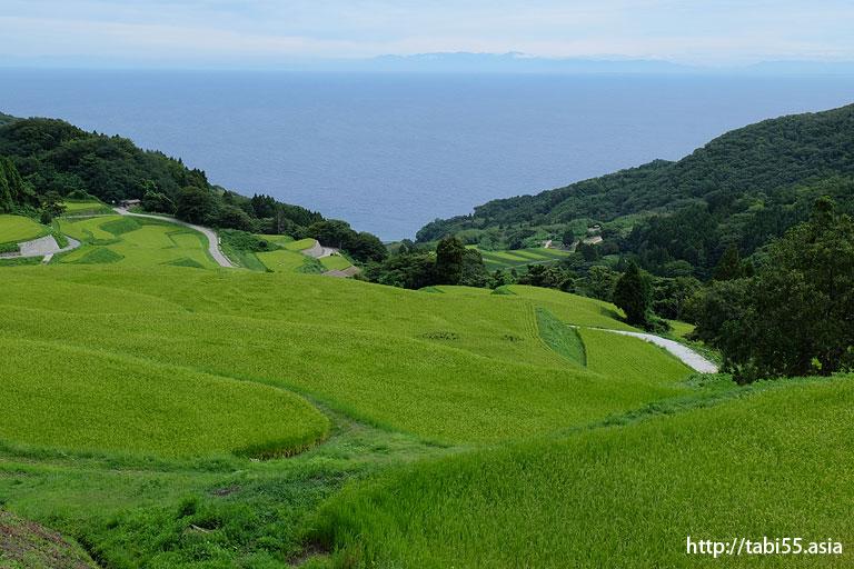 岩首の棚田(新潟県佐渡島)/Iwakubi of terraced rice fields (Sado Island, Niigata Prefecture)