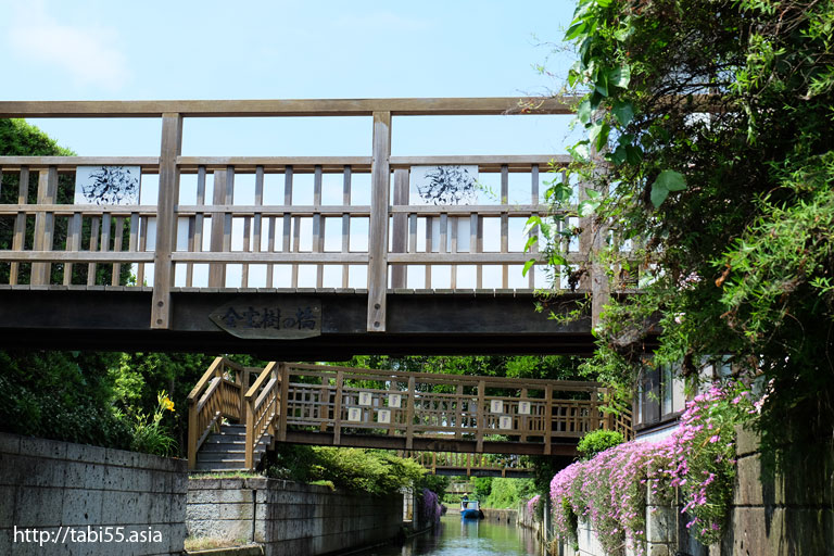 【初夏】加藤洲十二橋(千葉県香取市)