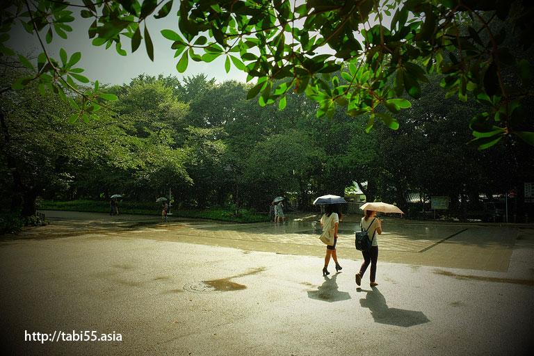 にわか雨@上野公園