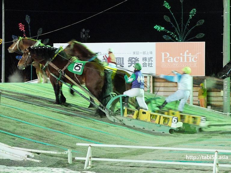 ばんえい競馬/Tokachi Racecourse