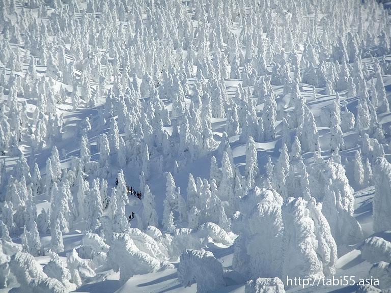 樹氷:スノーモンスター(青森県青森市)