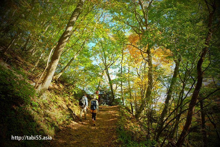 御岳山ハイキング