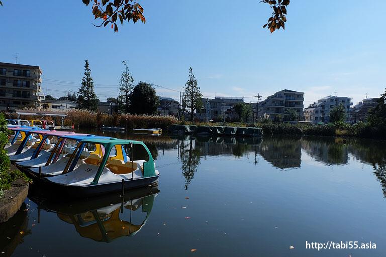 石神井公園(東京都練馬区)/Shakujii Park (Nerima-ku, Tokyo)
