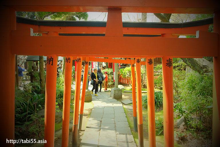花園稲荷神社@上野恩賜公園の桜!モデルコース