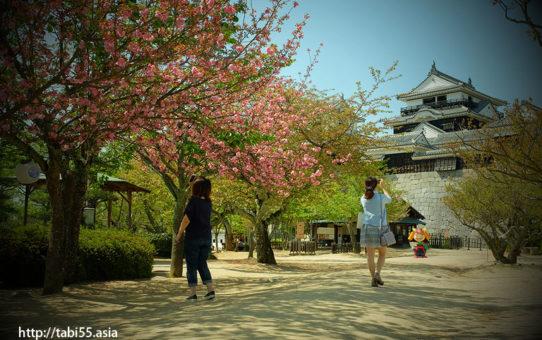 松山の観光のおすすめスポット【約8時間】モデルコース