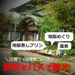 別府の日帰り観光モデルコース【車なし】8時間(大分)