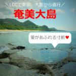 奄美大島を女子一人旅!レンタルバイクでまわった観光スポット【おすすめ16選】