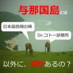 与那国島に女性一人旅【1泊2日】して観光!旅行記だよ(沖縄)