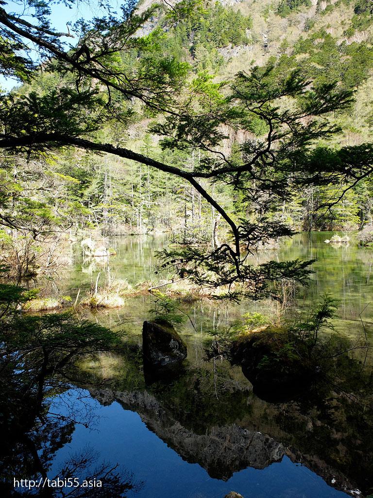 上高地の明神池(長野県松本市)