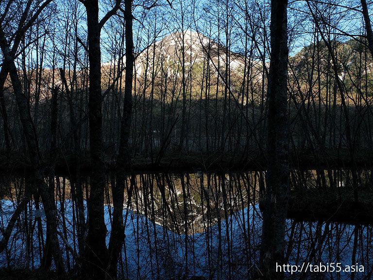 上高地の大正池(長野県松本市)
