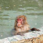 レイトチェックインOK!の温泉が【楽々】みつかる方法