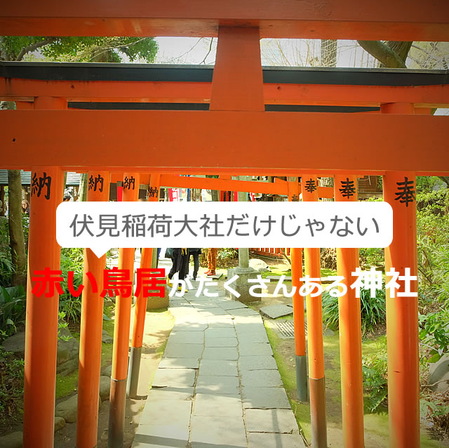 赤い鳥居(千本鳥居)がたくさんある神社【全国25選】