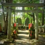 東伏見稲荷神社でお塚を巡拝してきました(東京都西東京市)
