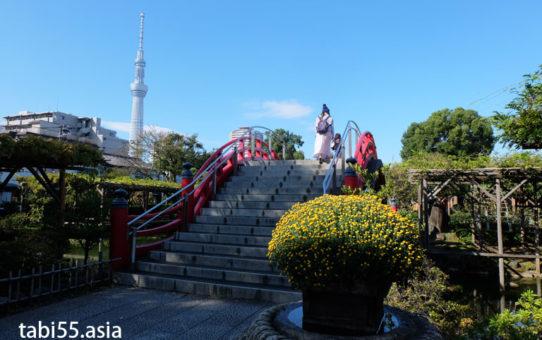 亀戸天神社からスカイツリーまで歩いてみた!藤のライトアップも(東京都江東区)