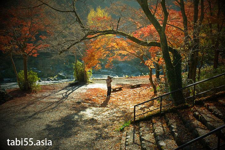 御岳渓谷で紅葉ハイキング(東京都青梅市)