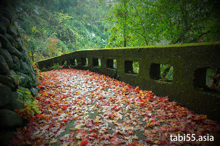 寒山寺@御岳渓谷で紅葉ハイキング(東京都青梅市)