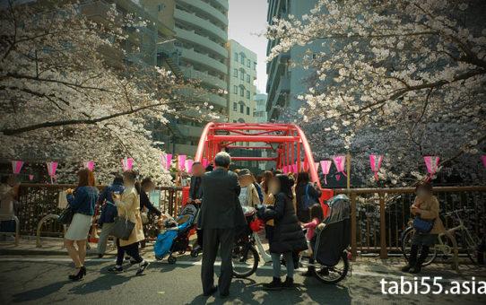 目黒川の桜のお花見!歩き方は?おすすめのコース【池尻大橋駅発→中目黒駅着】