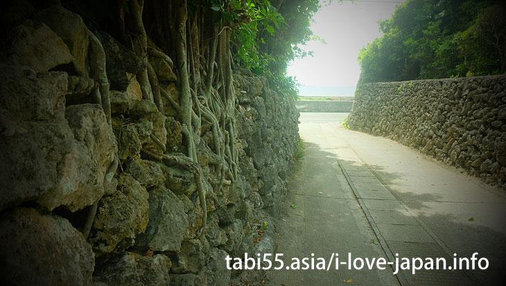 阿伝のサンゴの石垣@喜界島の観光!行ってよかった【おすすめ】
