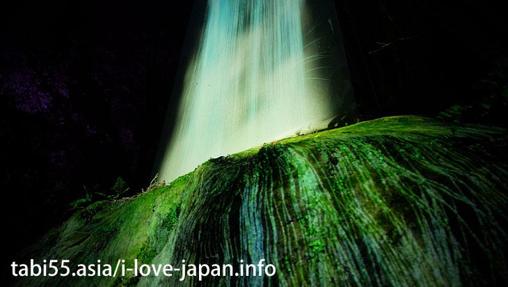 御船山楽園「かみさまがすまう森のアート展」へいってきた(佐賀県武雄温泉)