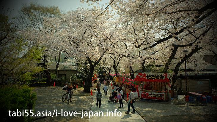 威光山法明寺|池袋の桜の名所