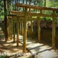 御手洗水神社(みたらいすい)へ公共交通機関でアクセス!宮崎県延岡の町中の秘境