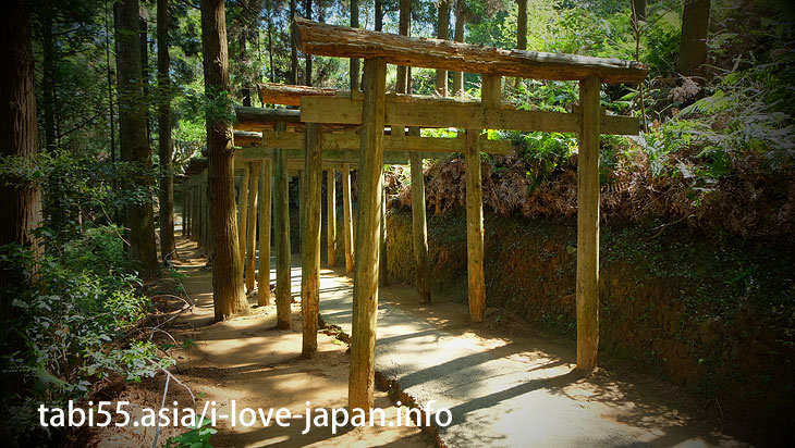 Hiking to Mitarasui Shrine with series of tree torii