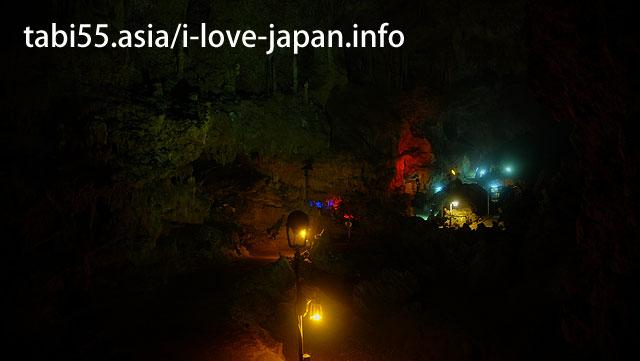 【敷地内を探検】八重山鍾乳洞 動植物園