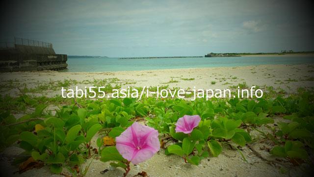 Walking distance from the center of Miyakojima! Painagamama Beach