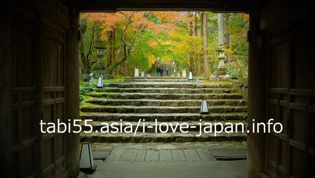 4. Autumnal Chikurin-ji Temple(竹林寺) The garden is a must see