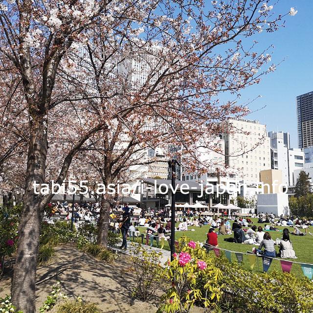A new famous cherry blossom spot ? Minami Ikebukuro Park