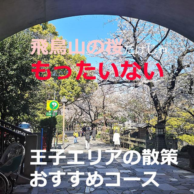 王子は、飛鳥山公園の桜花見だけじゃない!お散歩観光したよ