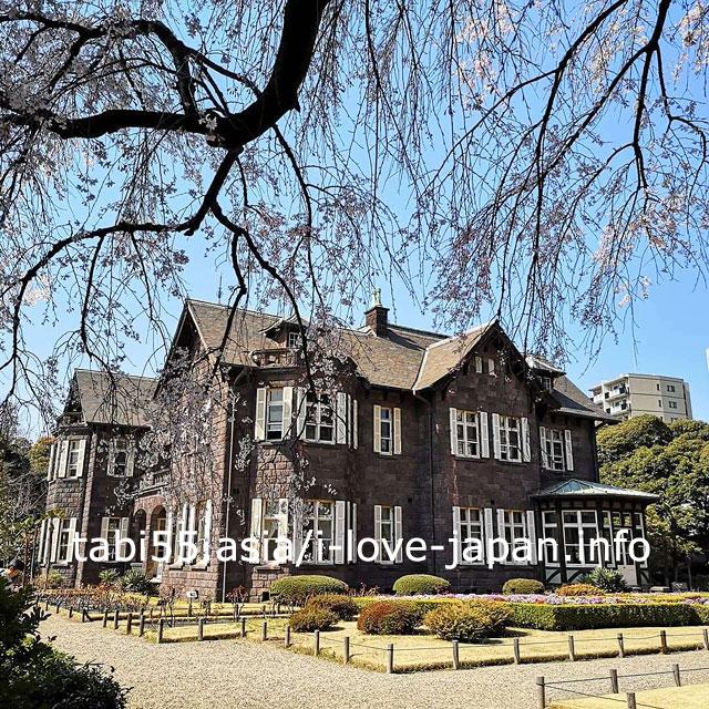 ジョサイア・コンドル建築の洋館と桜のコラボ!旧古河庭園
