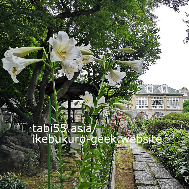 You can see rose,lily,hydrangea in Summer(late June)