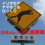 珍しい交通標識!爆笑×面白い×レアな日本の標識【13選】